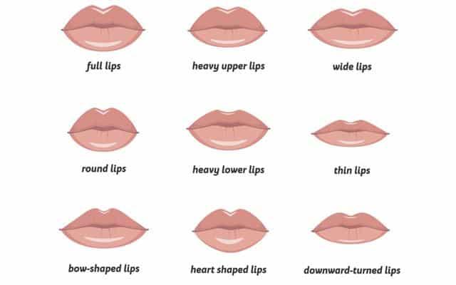 lip-shape